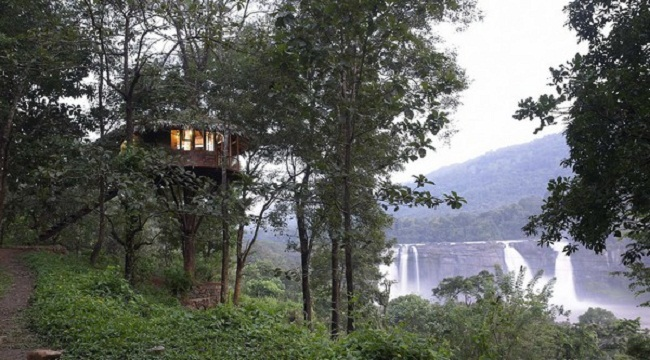 tree-house-in-athirappilly-waterfalls