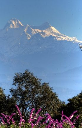Destinations of Ranikhet